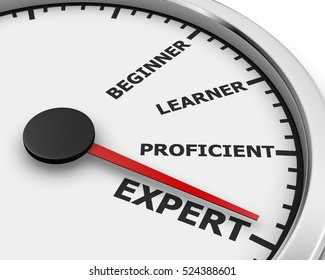 Professional Expert Learner Experience 3d Illustration  meter rendering