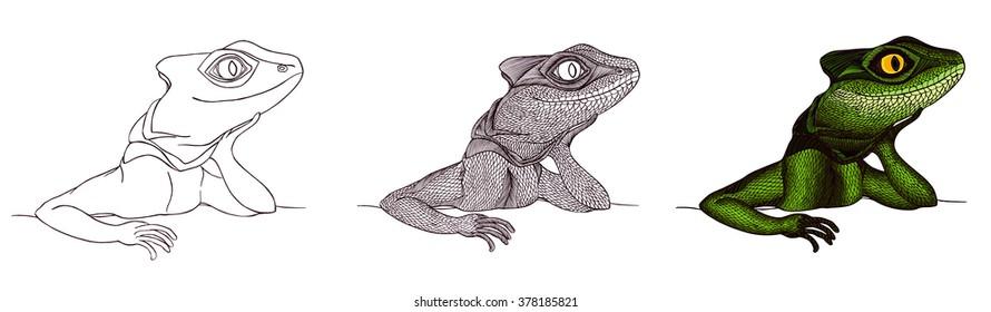 Profile Lizard. Hand drawn.Graphic style
