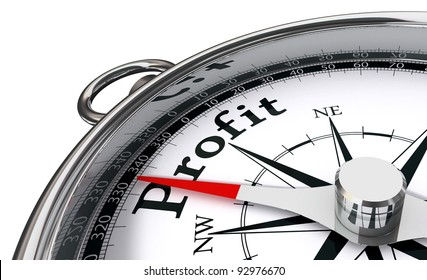 profit the way indicated by compass conceptual image