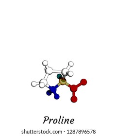Proline Amino Acid