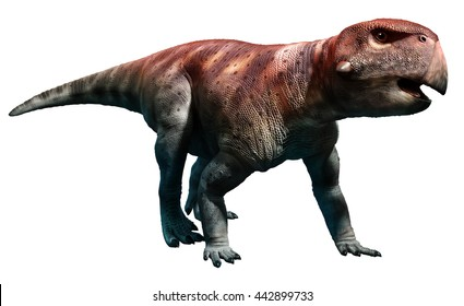 Herrerasaurus Images Stock Photos Vectors Shutterstock