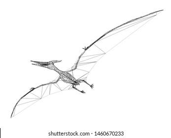 Pterosaur  dinosaurs  ,3d rendering wire frame