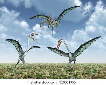 The pterosaur Quetzalcoatlus attacks the dinosaur Camarasaurus Computer generated 3D illustration