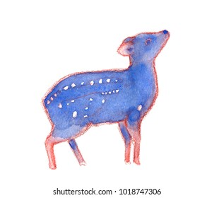 Pudu deer watercolor isolated on white