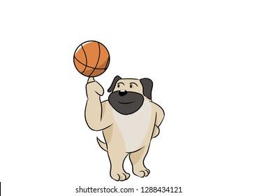 Pug dog playing basketball