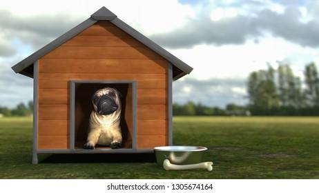 Pug sitting in hos dog house outdoor  3d illustration