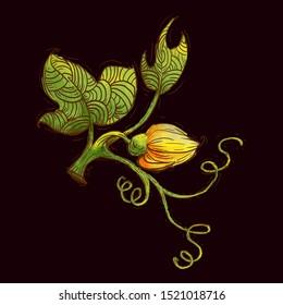 Pumpkin flower and leaves. Textured doodle illustration