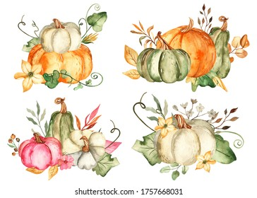 Pumpkins, autumn leaves and flowers. Watercolor hand drawn composition