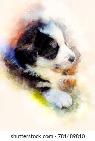 puppy dog and Softly blurred watercolor background.