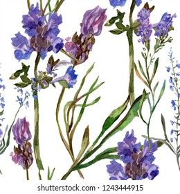 Purple lavender. Floral botanical flower. Seamless background pattern. Fabric wallpaper print texture. Hand drawn watercolor background illustration set.