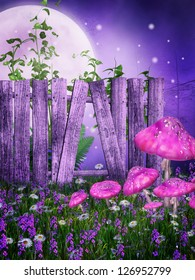 Purple meadow with an old wooden fence and pink mushrooms