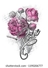 Purple roses with around white and black texts. JPEG format.