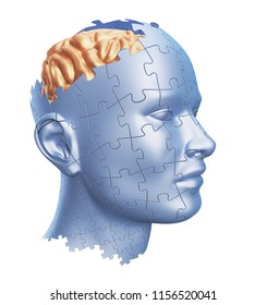 Puzzle Shaped Human Head with Brain isolated on White Background, 3D illustration