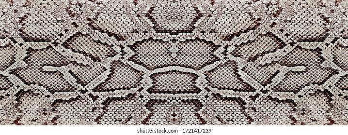 python skin, snake pattern, animal skin pattern design