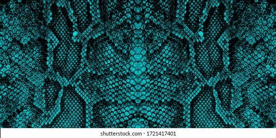 python skin  snake pattern  animal skin