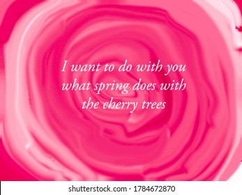 Quote written on a pink background