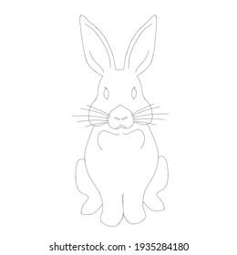 Rabbit close-up in a sitting position contour on a white background looks in front of the muzzle visible ears stick up