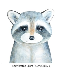 Raccoon character portrait. Hand drawn watercolor graphic painting on white background, isolated, looking at camera, closeup. Symbol of exploring, courage, intelligence, secrecy, disguise, adaptation.