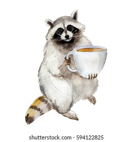 Raccoon with coffee mug, animal character isolated on white background watercolor illustration.