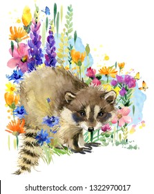 raccoon. forest animals. Summer flowers watercolor illustration. greeting card. blossoming fields.