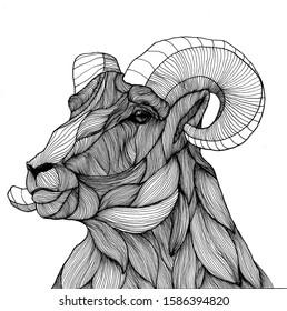 ram aries illustration black and white