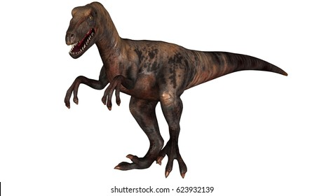 Raptor Velociraptor dinosours - isolated on white background - 3d render