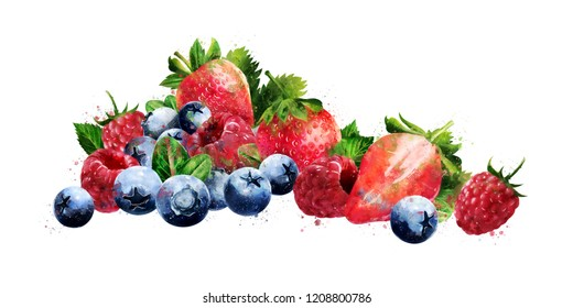 Raspberries, blueberries and strawberries on white background. Watercolor illustration