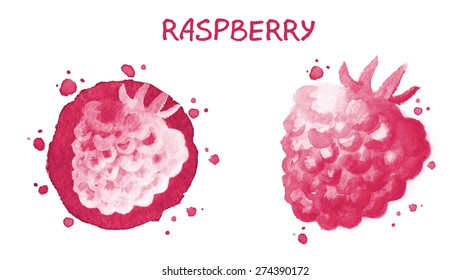 Raspberry. Watercolor drawing