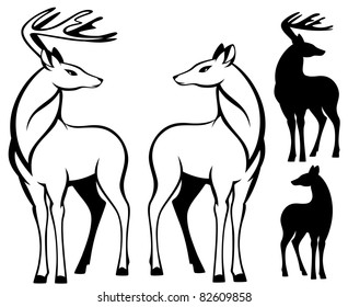 raster - two beautiful deers standing (vector version can be found in my portfolio)