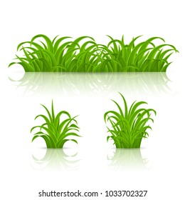 Raster version. Backgrounds of Green Grass. Isolated on White Background