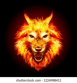 Raster version. Head of Aggressive Fire Woolf. Concept Image of a Red Wolf and Flame on a Black Background