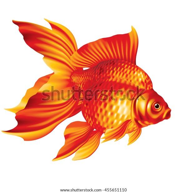 Raster Version Ryukin Goldfish Red On Stock Illustration