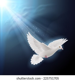 Raster version. White dove flying in sunlight against dark  blue sky as symbol of peace