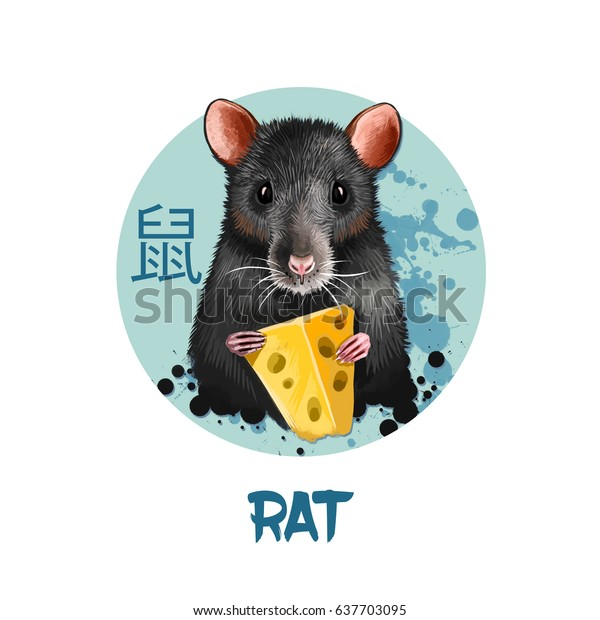 Rat chinese horoscope character isolated on white background. Symbol Of New Year 2020. Pet animal in round circle with hieroglyphic sign, digital art realistic illustration, greeting card design