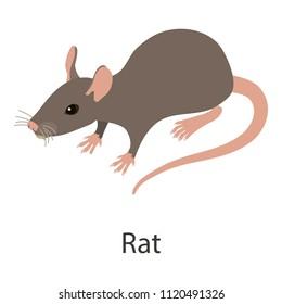 Rat icon. Isometric illustration of rat icon for web