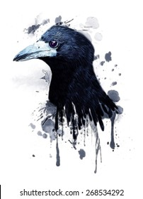 Raven illustration.Carrion crow with watercolor wings isolated against white background.T-shirt Graphics.Animal Pattern.