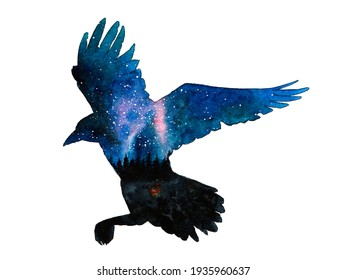 Raven silhouette with night sky. Stars.