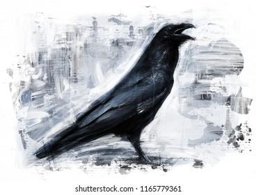raven sketch / oil color painting