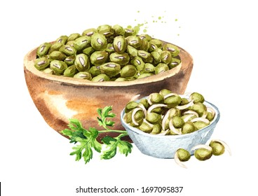 Raw and sprouted mung beans in a paper bag and dry pods. Hand drawn watercolor illustration, isolated on white background