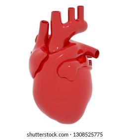 Real Heart White Backgrond 3D Render.