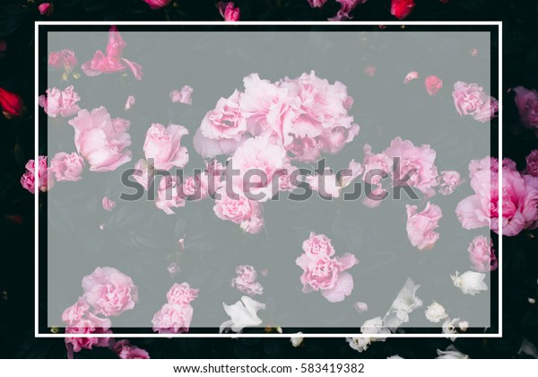 Real nature group of flowers with modern creative translucent frame background. For nature concept in several occasional