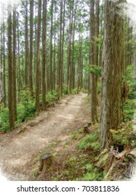 Realism Style Oil Painting; Trail at the World Heritage Forest Kumano Kodo, Wakayama Prefecture, Japan, May, 2012