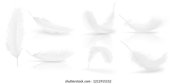 realistic 3d set of white bird or angel feathers in various shapes, isolated on background. Symbol of lightness, innocence, heaven, literature and poetry. Decoration element for your design