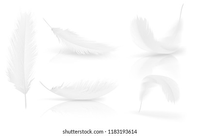 Realistic 3d white bird feathers set. Symbol of lightness, innocence, hope and heaven. Various shapes of Angel or bird detailed feathers. isolated illustration on a white background.