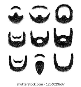 Realistic Beard set  isolated on white background  illustration.