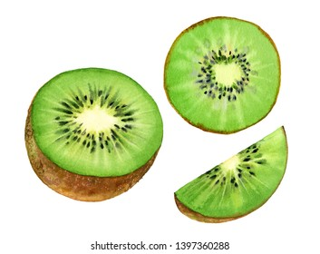 Realistic botanical watercolor illustration kiwi fruit: half slice and boat, commercial juicy isolated clipart hand drawn, fresh tropical food exotic green color
