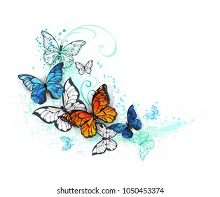 Realistic butterflies, blue Morpho and orange monarchs on white background.