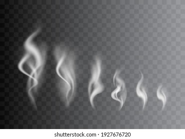 Realistic Detailed 3d Images Smoke Vapor Texture Set on Background Smoking Elements Big and Small. illustration of Fog Motion Effect