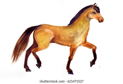 Royalty Free Horse Print Images Stock Photos Vectors Shutterstock