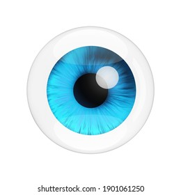 Realistic Human Blue Eye with Reflections on a white background. 3d Rendering